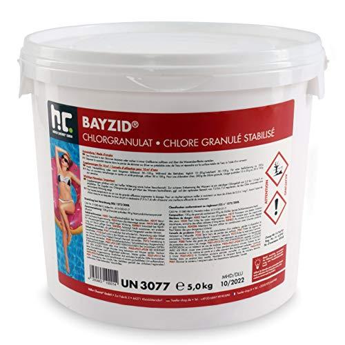 Höfer Chemie 2 x 5 kg (10 kg) Chlor Granulat BAYZID ® wirkt schnell und zuverlässig für Pool und Schwimmbad
