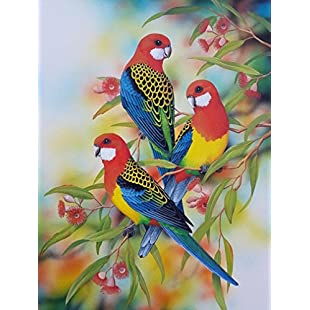 Vaycally Newest DIY 5D Diamond Painting by Number Kits, Full Drill Cute Parrots Embroidery Cross Stitch Arts Craft Canvas Wall Decor, 12 x 15inch