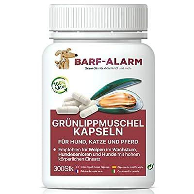 barf-alarm Grünlippmuschel-Kapseln Hund – 300 Kapseln – 100% Grünlippmuschelpulver Kapseln für Hunde mit je 500mg – Grünlippmuschelextrakt Hunde