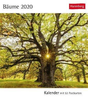 Postkartenkalender Bäume - Kalender 2020 - Harenberg-Verlag - mit 53 heraustrennbaren Postkarten - 16 cm x 17,5 cm