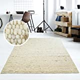 Taracarpet Moderner Handweb Teppich Alpina handgewebt aus Schurwolle für Wohnzimmer, Esszimmer, Schlafzimmer und die Küche geeignet (250 x 290 cm, 60 Beige meliert)