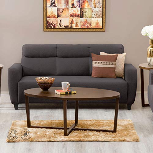 Home Centre Emily Fabric 3 Seater Polyester Sofa (Brown)