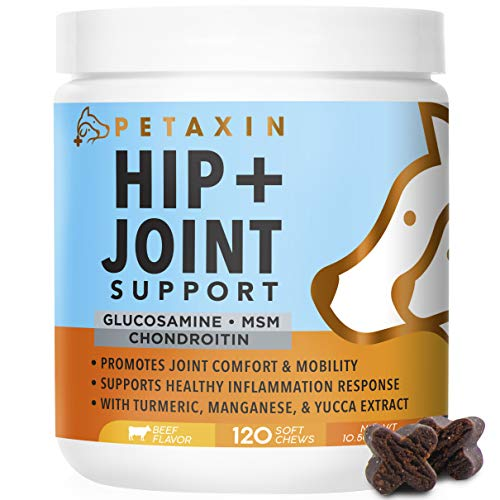 Petaxin Glucosamine for Dogs - Advanced Hip and Joint Supplement - Support for Dog Joint Pain Relief and Dog Mobility - with Chondroitin, MSM, Turmeric, & Yucca - 120 Soft Chews