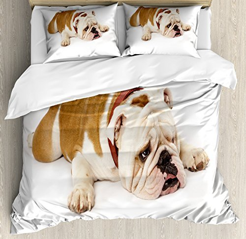 Ambesonne English Bulldog Duvet Cover Set, Sad and Tired Bulldog Laying Down European Pure Breed Animal Photography, Decorative 3 Piece Bedding Set with 2 Pillow Shams, Queen Size, Brown Cream