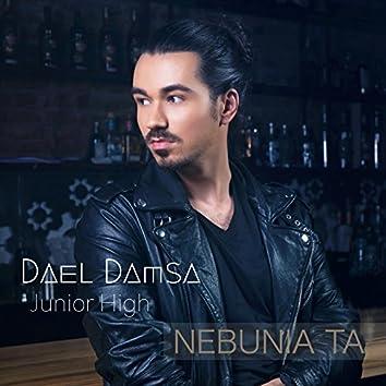 Nebunia Ta (feat. Junior High)