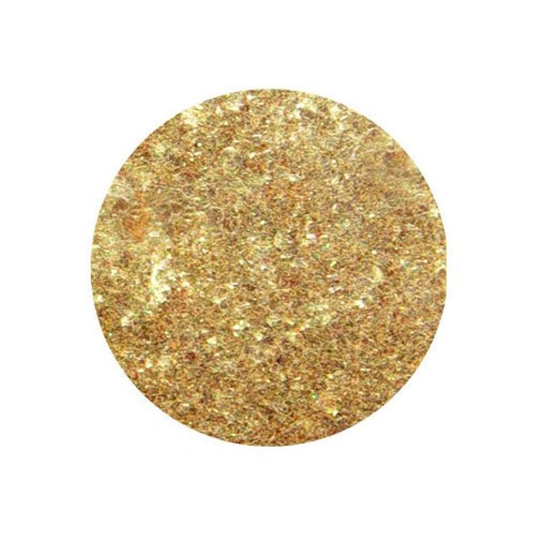 正統派士気マリンピカエース クリスタルパール L #432-CKL ゴールド 0.5g アート材