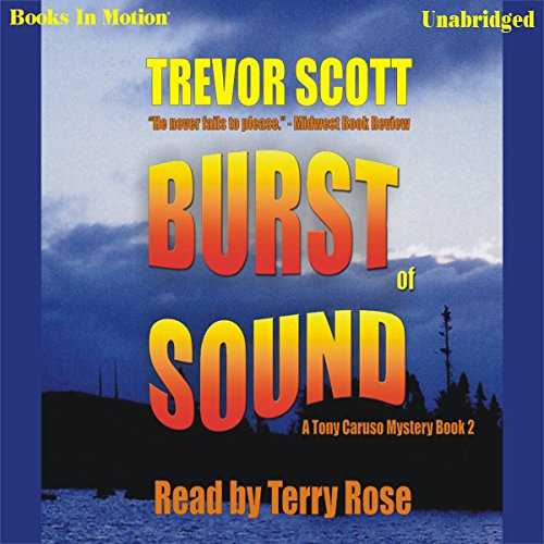 Burst of Sound audiobook cover art