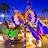 Luces Solares de Jardín, LED Lámpara Solar al Aire Libre luces Decorativas de Mariposa de Fibra óptica con Cambio de Color Decoración Exterior, Luz Solar Iluminación para Camin/Pasillo/Césped/Patio