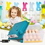 4YANG Egg Incubator-16 Mini incubatrice automatica con controllo automatico della temperatura con pinna, utilizzata per schiudere uova di oca e quaglia, incubatrice per uova