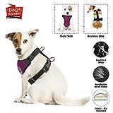 SlowTon Arnés para automóvil,(Sin cinturón de Seguridad) Arnés de Chaleco para Mascotas para Perros Seguridad en el Coche Cuello Ajustable y Correa para el Pecho (M, arnés de Perro (Burgund))