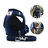 <span class='highlight'><span class='highlight'>Anlitent</span></span> Comfort Fit No Pull Dog Harness and Lead Set for Walking, Chest Padded Dog Body Vest Harnesses for Small Puppy Dogs/Large Cats (Medium, Corduroy-Navy)