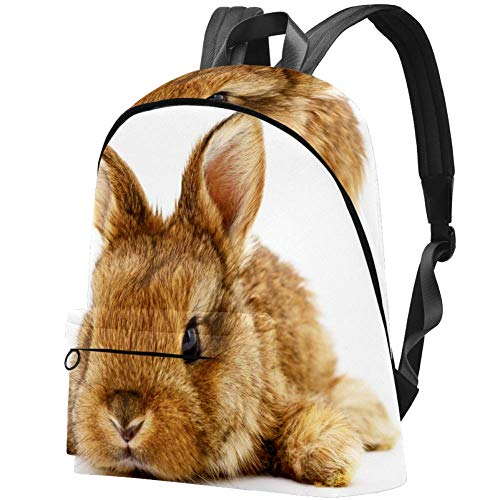 Brown Bunny Rabbit Bag Teens Student Bookbag Lightweight Shoulder Bags Travel Backpack Daily Backpacks