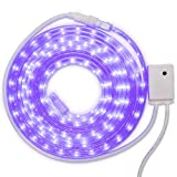 GE - 'Color Effects 19 ft LED Color...