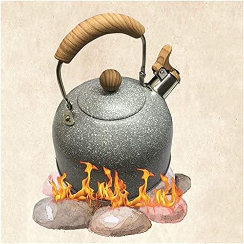 Tetera de acero inoxidable para estufa, tetera de acero inoxidable, elegante, pequeña tetera ergonómica, adecuada para varias estufas (2 L, 64 onzas) teteras de té (color: gris)