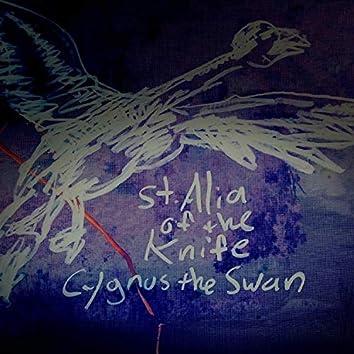 Cygnus the Swan
