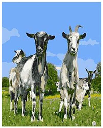 Niño Adulto Pintura Por Números Kits Divertido Cabra Conjunto Para Pintar Por Números En Lienzo Arte De La Pared Fotos De Animales Para Sala De Estar Sin Marco