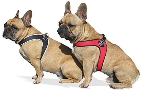 Tre Ponti Geschirr für Hunde / Farbe Schwarz / Gr.2 bis ca. 5kg Brustumfang 33-37cm