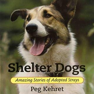 Shelter Dogs cover art