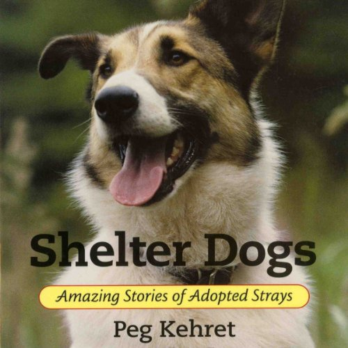 Shelter Dogs cover art
