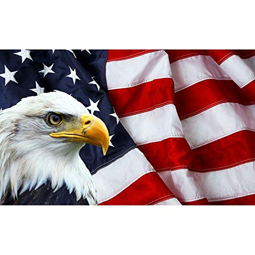 5D Full Drill American Flag Diamond Painting Kit,EVERMARKET DIY Diamond Rhinestone Painting Kits for Adults and Beginner Embroidery Arts Craft Home Decor, 16 X 12 Inch(Eagle American Flag)
