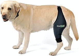 Amazon.es: rodillera perro