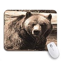 ROSECNY 可愛いマウスパッド グリズリー・ベアとしても知られているSilvertip北米滑り止めゴムバッキングコンピューターのマウスパッドのノートマウスマット
