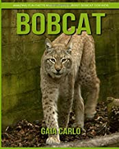 Bobcat: Amazing Fun Facts and Pictures about Bobcat for Kids