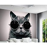 Tapete Europäische Tragen Sonnenbrille Katze Niedlich Spielen Coole Kinderzimmer Hintergrund Wand 3D Tapete Wandbild 200X140 Cm