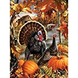 Kaliosy 5D DIY Diamond Painting Full Drill by Number Kits Thanksgiving Pumpkin Turkey, Paint with Diamonds Arts Wall Decoration Mosaic Home Bedroom Decor 30X40cm 12X16inch (X11185)