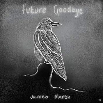 Future Goodbye