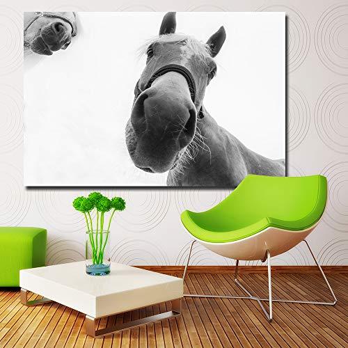 YHZSML HD Drucke Bilder Wandkunst White Horses Closeup Schnauze Nase Grau Hintergrund Gemälde Für Living Home Decor Tier Poster 70x105CM