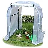Invernaderos Invernadero Blanco Pequeño con Puerta Enrollable con Cremallera, Invernadero Portátil Verde para Interiores Al Aire Libre, Alto 120 cm