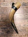 1 Trinkhorn Cnuth mit Halter ca. 0,7 Liter 35-45 cm poliert und versiegelt