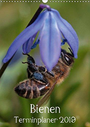 Bienen-Terminplaner 2019 (Wandkalender 2019 DIN A3 hoch): Faszinierende Nahaufnahmen der kleinen Nützlinge (Planer, 14 Seiten ) (CALVENDO Tiere)