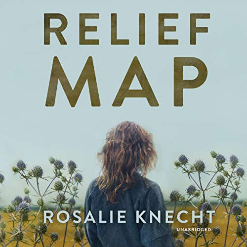 Relief Map audiobook cover art