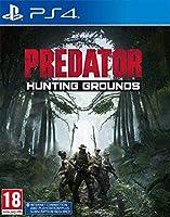 Predator: Hunting Grounds (PS4) (輸入版)