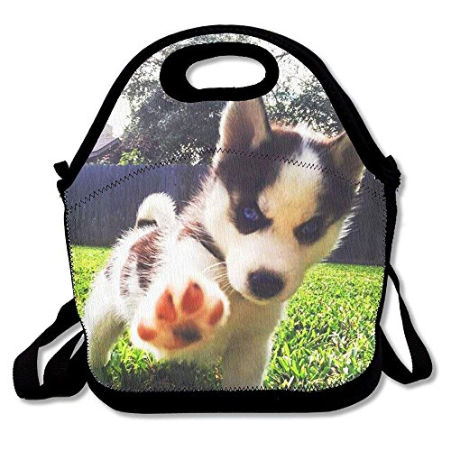 fengxutongxue Cute Doggy Printed Portable Lunch Bag Carry Case Tote with Zipper Strap Box Cooler Container Bags Picnic Outdoor Travel Fashionable Handbag Pouch for Women Men Kids Girls