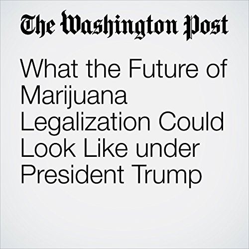 What the Future of Marijuana Legalization Could Look Like under President Trump audiobook cover art