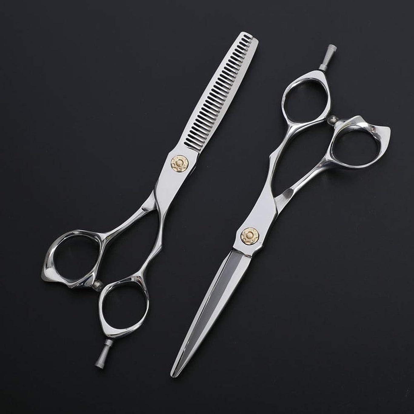 助けになる不倫合計Hairdressing 6インチ理髪はさみ、理髪店の特別なはさみ、ステンレス鋼フラット+歯はさみ散髪セットヘアカットはさみステンレス理髪はさみ (色 : Silver)