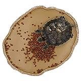 M.Z.A Plato de Comida de Reptil, Plato de Alimentación de Resina Para Mascotas, Cuenco de Alimentación de Tortuga Para Pequeños Sulcatas, Dragón Barbudo, Gecko, Lagarto de Patio