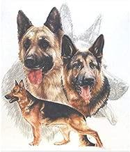 zhui star DIY Round Diamond Painting Kits for Adults Full Drill Cross Stitch German Shepherd Dog Home Decoration 40x50CM