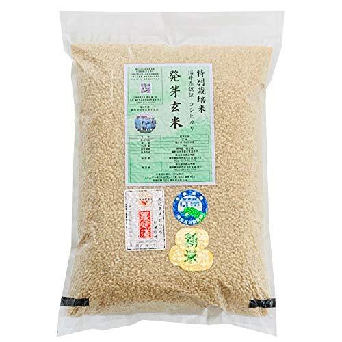 発芽玄米 無農薬(農薬・化学肥料不使用) コシヒカリ 5kg