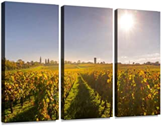Autumn sunset on vineyards around Saint-Emilion with hills grapes and trees in Medoc region Canvas Wall Artwork Poster Modern Home Wall Unique Pattern Wall Decoration Stretched and Framed - 3 piece