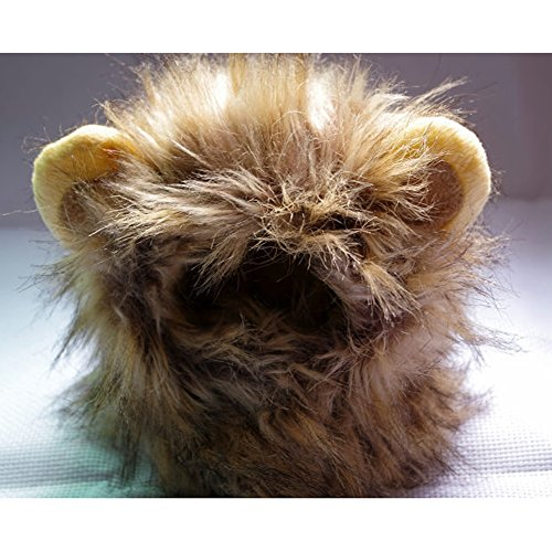 Lovely Attractive Cute Pet Cat Lion Mane Hat Wig Costume Cosplay Fancy Dress Up with Ears by ZSL