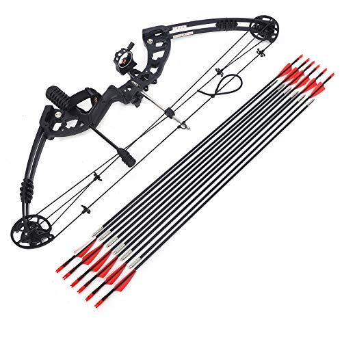 Gdrasuya10 Compound Bow and Arrow Kits, 310 Feet/S Wheelbase 34 Inches (86cm) 310FPS IBO Speed Reading Draw Distance 24'-29.5' Archery Package 30-60 Pounds Shock Absorption Compound Bow Kit