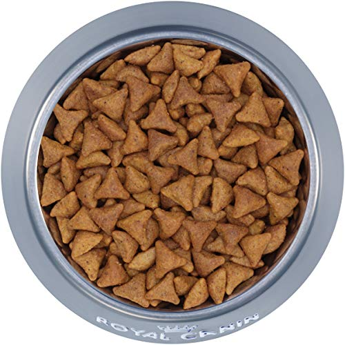 Royal Canin Indoor Adult Dry Cat Food, 15 lb.