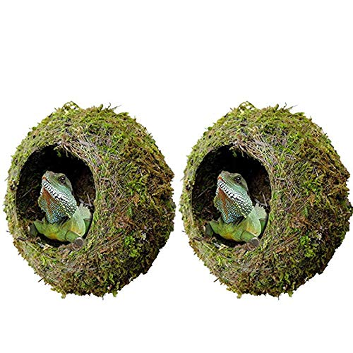"kathson 2pcs 6"" Reptile Moss Cave Hide for Humidity,Mossy Hideout for Turtle Crested Gecko Spider Lizard Frog Chameleon"