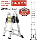 16.5Ft/5M Aluminum Telescopic Ladder Telescoping A-Type(2.5m+2.5m) Extension Multi Purpose Folding Portable Combination Ladder