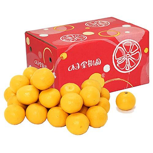 ニューサマーオレンジ (日向夏・小夏みかん)家庭用 約5kg