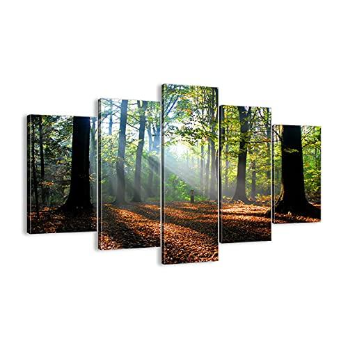 Cuadro sobre lienzo - Impresión de Imagen - Bosque Hoja Sol - 160x85cm - Imagen Impresión - Cuadros Decoracion - Impresión en lienzo - Cuadros Modernos - Lienzo Decorativo - EA160x85-0136